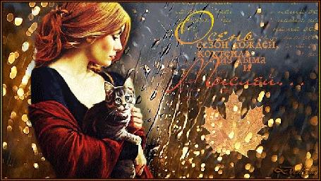 Анимация У осеннего, дождливого окна стоит задумчивая девушка и держит в руках котенка (Осень - сезон дождей, коктейль из дыма и мыслей)