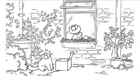 Анимация Кот сидит у ящика, из которого вылетают бабочки, кошка с балкона наблюдает за бабочками