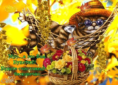 Анимация Кот в шляпе и темных очках лежит в гамаке на фоне цветов в корзине и осенних листьев (Мрр, А это Вам, Букетик! Будьте счастливы бесконечно!)