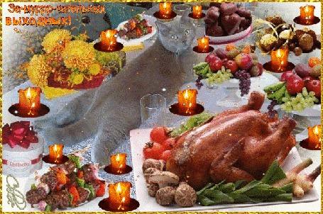 Анимация Красивый британец разложился на аппетитном столе, на котором стоит запеченная курица, фрукты и горят свечи (Замурррчательных выходных)