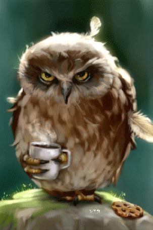 Анимация Сердитая сова с дергающимся глазом стоит на одной лапке и держит чашку с кофе в другой лапке
