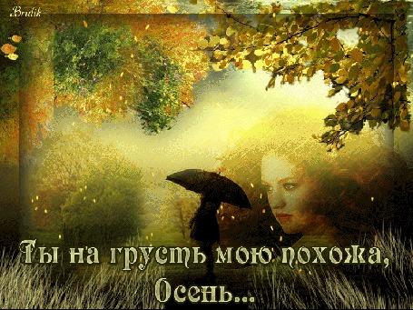 Анимация Лицо девушки на фоне осеннего пейзажа с фигурой девушки под раскрытым зонтом (Ты на грусть мою похожа, Осень), by Brulik