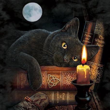 Анимация Кот лежит на стопке книг перед горящей свечой, в небе на фоне полного диска луны пролетает ведьма на помеле