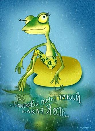 Анимация Лягушка в трусиках сидит на листе в пруду под дождем (. Полюби меня такой, какая я есть.), by a-zarina