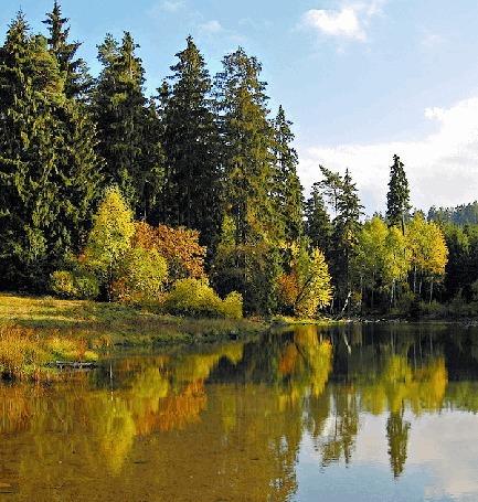 Анимация Красивый осенний пейзаж