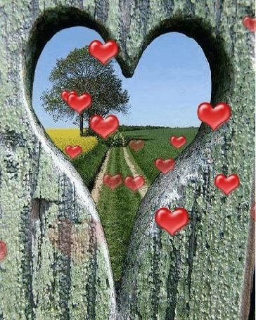 Анимация Из летнего пейзажа за деревянным забором, через отверстие в виде сердца, летят красные сердечки