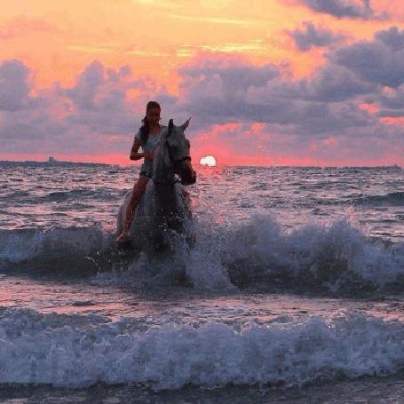 Анимация Девушка на лошади, стоящей в воде