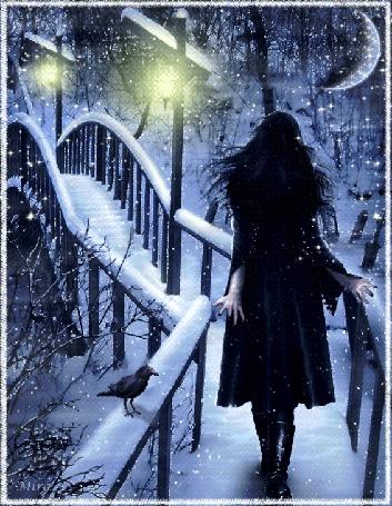 Анимация Девушка идет усыпанному снегом мостику через замерзший канал, на перилах сидит ворона, в небе сияет полумесяц, by Mira