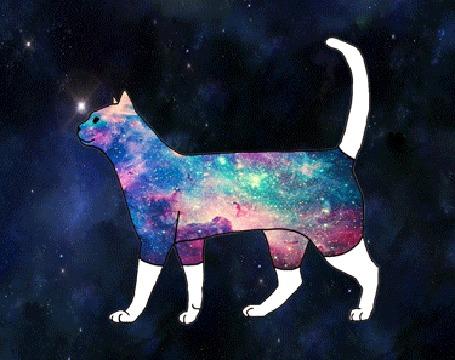 Картинки природа космос фэнтези животные