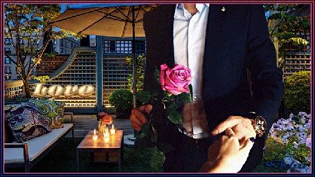 Анимация Мужчина с розой в руке, держит за руку девушку (Love)