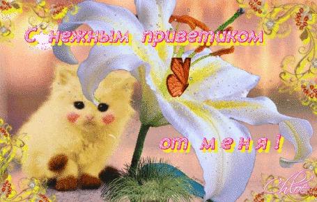 Анимация Славный котик, раскрашенный под Пикачу, сидит под белой лилией, бабочка машет крылышками, (С нежным приветиком от меня!)