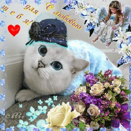 Анимация Синеглазый кот в шляпке, букет цветов, справа вверху ангелочек (С любовью для тебя!)