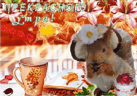 Анимация Утро, чашка чая с паром, белочка в шляпке, конфеты Раффаэлло, лилии вверху, (Прекрасного утра!)
