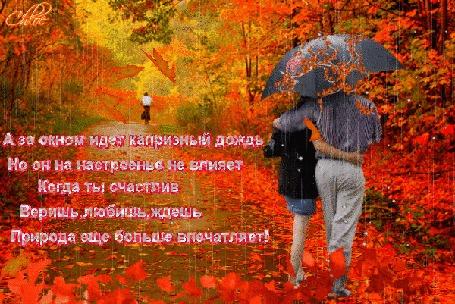 Анимация Яркая осень, листопад, дождь, под зонтом влюбленная пара (А за окном идет капризный дождь, но он на настроенье не влияет, когда ты счастлив, веришь, любишь, ждешь, природа еще больше вдохновляет), автор Chloe
