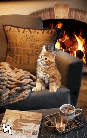 Анимация Котенок сидит на кресле у горящего камина и столика с горячим напитком