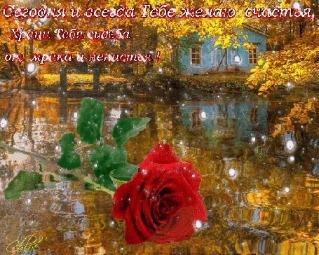 Анимация Осенне-зимний пейзаж, на воде лежит красная роза, идет снег на фине домика между листвой деревьев (Сегодня и всегда тебе желаю счастья, храни тебя судьба от мрака и ненастья!), автор Chloe