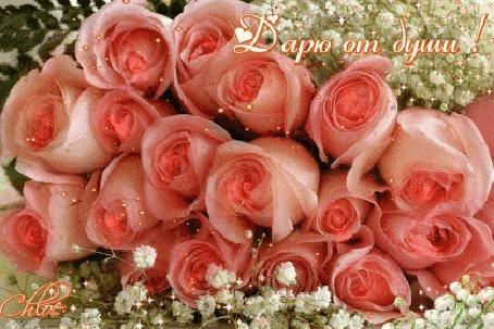 Анимация Красивый букет розовых роз (Дарю от души!), автор Chloe