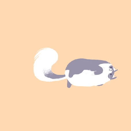 Анимация Кошка лежит и виляет хвостом