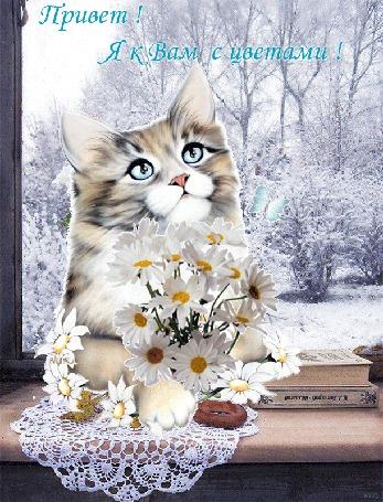 Анимация Кот сидит на подоконнике с цветами в лапах, рядом лежат книги, сушка и летает бабочка, за окном зимние деревья, (Привет! Я к Вам с цветами! ) автор Ирис