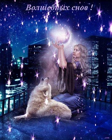 Анимация Девушка сидит на крыше дома рядом с собакой, держит в руках шар на фоне вечернего города, (Волшебных снов! ) автор Ирис