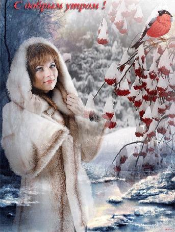 Анимация Девушка в белой шубке смотрит на снегиря, который сидит на ветках рябины, покрытой снегом, на фоне утреннего зимнего леса (С добрым утром!) автор Ирис