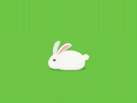 Анимация Белый кролик на зеленом фоне