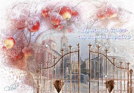 Анимация Зимний пейзаж с яблоками в инее под падающим снегом, (Пришла зима-отворяй ворота)