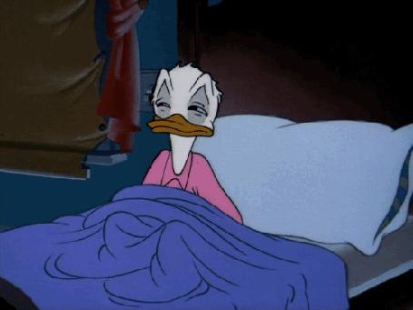 Анимация Donald Duck / Дональд Дак ложится спать, герой мультфильма студии Walt Disney / Волта Диснея