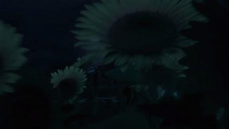 Анимация За полем подсолнухов стоит дом под ночным небом, мультик Машкины Страшилки