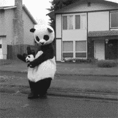 Анимация Танцующая панда с игрушечной пандой