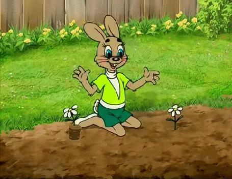 Анимация Заяц сажает цветы, мультик Ну, погоди!