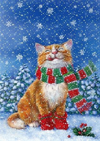 Анимация Кот в шарфе под падающим снегом