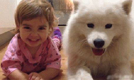 Анимация Смеющаяся девочка и большая белая собака