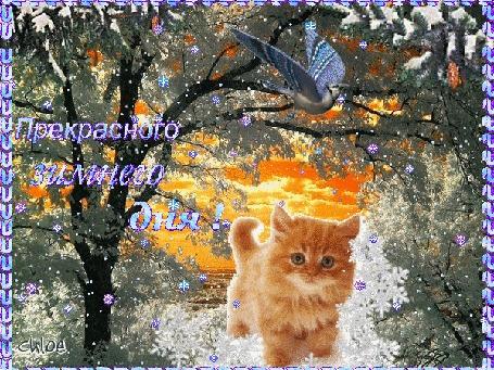 Анимация Рыжий котенок на фоне зимнего пейзажа,(Прекрасного зимнего дня!)