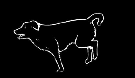 Анимация Быстро бегущая собака