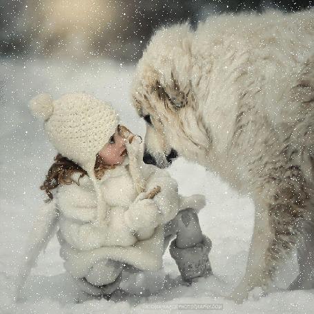 Анимация Девочка со своим псом на снегу