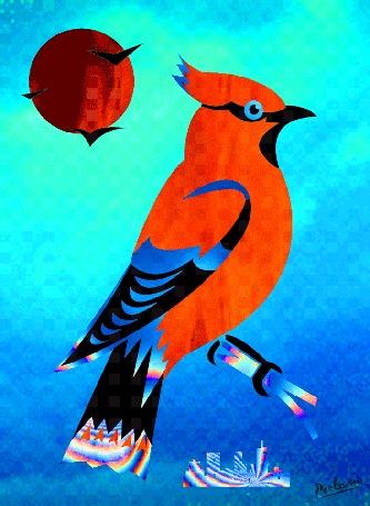 Анимация Красивая птица переливается всеми цветами радуги