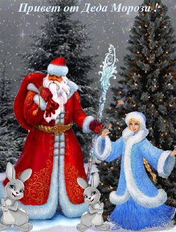 Анимация Дед Мороз с мешком подарков и Снегурочка стоят на фоне зимнего леса, елки с огнями, у ног Деда Мороза два зайца, (Привет от Деда Мороза!)