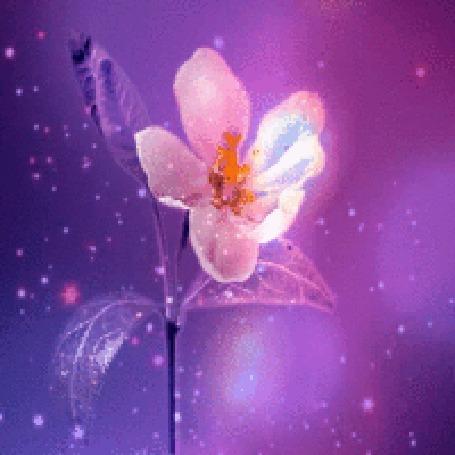 Анимация Цветок качается в блестках