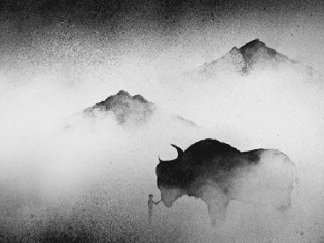 Анимация Мальчик гладит буйвола, на фоне гор, укутанные туманом