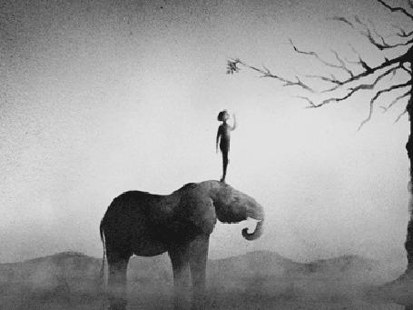 Анимация Мальчик стоит на голове слона, который помогает ему достать до верхней ветки дерева