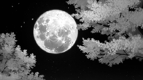 Анимация Опадающая сакура на фоне полной луны