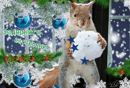 Анимация В центре белочка со снежком в лапах в праздничной обстановке (Задорного настроения)