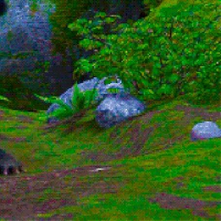 Анимация Дракон Беззубик охотится за солнечным зайчиком, мультфильм How to Train Your Dragon / Как приручить дракона