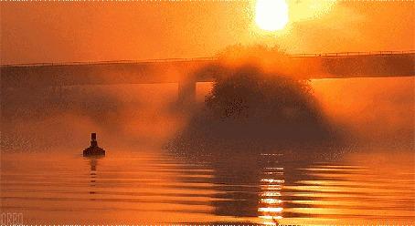 Анимация Мост над озером, укутанным туманом
