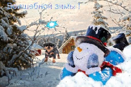 Анимация На фоне зимней деревеньки лежит загадочно-задумчивый снеговик, летает волшебная снежинка, идет снег, собачка радостно машет хвостиком,(Волшебной зимы!)