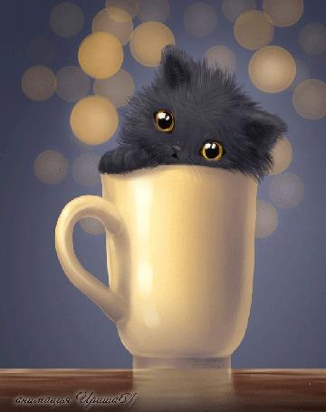 Анимация Черный котенок выглядывает из кружки