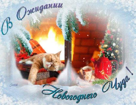 Анимация Рыжий кот лежит у горящего камина, (В ожидании новогоднего чуда)