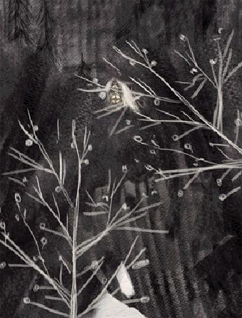 Анимация Деревья раздвигаются и появляется домик