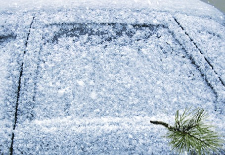 Анимация Идет снег, сосновая веточка пишет на запорошенном стекле машины слово ЗИМА и рисует веселую рожицу, by a-zarina